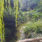 Забытый сад Реймса ...